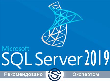 Microsoft SQL Server Standard 2019 Russian Open Level A Government (228-11488) для государственных учреждений