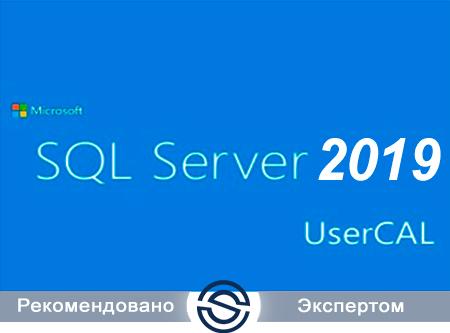 Microsoft SQL CAL 2019 Single Open No Level User CAL (359-01028) для коммерческих организаций