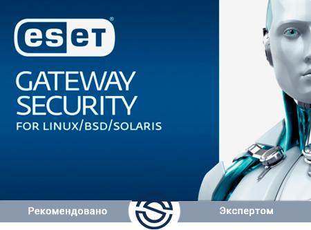 Антивирус ESET Gateway Security для Linux / FreeBSD Лицензия на 200 пользователей (NOD32-LGP-NS-1-200 KZ)