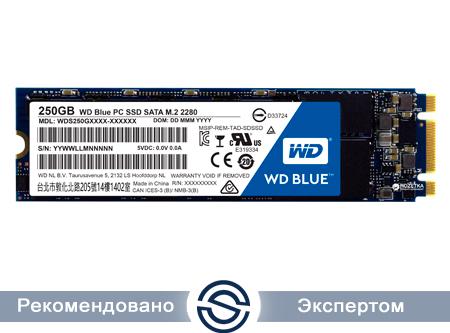 SSD 250Gb WD Blue WDS250G2B0B 3D NAND M.2 2280 SATA (TLC)
